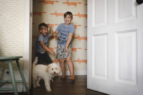 Two happy brothers playing with their dog at home - EYAF00323