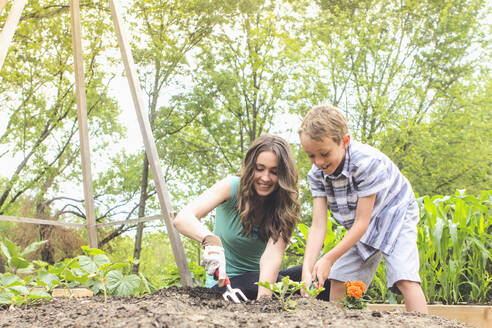 Mother and son planting in garden - BLEF12445