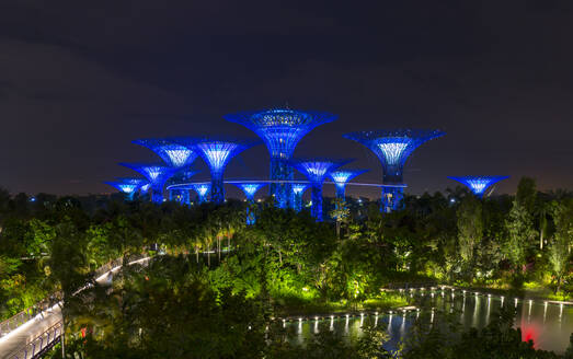 Gardens by the Bay with Supertree Grove and skywalk at night, Singapore - HSIF00724