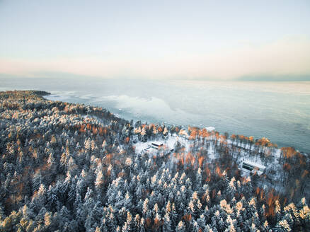 Aerial view two houses surrounded by forest on the coast in Estonia during winter. - AAEF00888