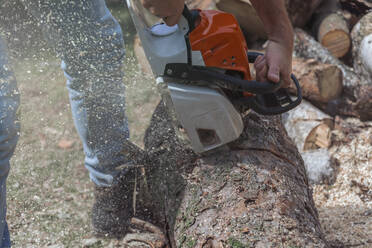Man jointing a tree trunk with a motor saw - MMAF01090