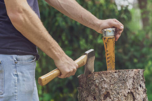 Man standing at a tree trunk holding an axe and a wedge - MMAF01096