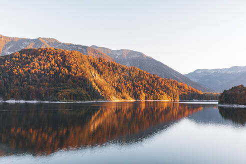 Scenic view of Sylvenstein lake by forest against clear sky during autumn, Bavaria, Germany - MMAF01102