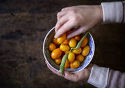 Woman's hands holding bowl of kumquats - MAMF00786
