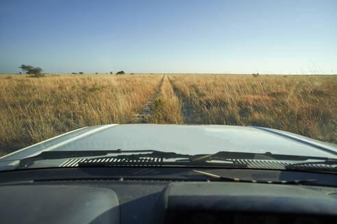 Car driving through savannah landscape, Makgadikgadi Pans, Botswana - VEGF00493