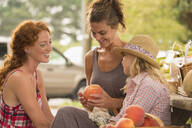 Family browsing produce at farmers market - BLEF14090