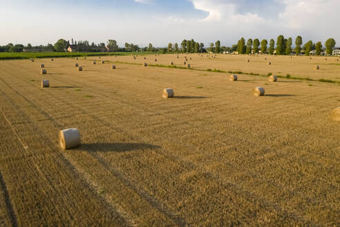Drone shot of cultivated land at Friuli-venezia Giulia - MAUF02742