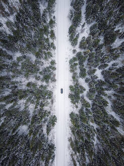 Aerial view of a car driving on a snowy road surrounded by the forest in Estonia - AAEF02485