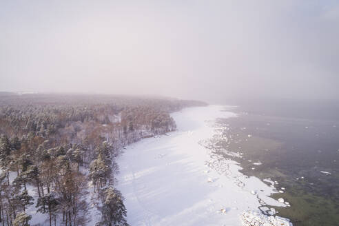 Aerial view of the snowy misty coast of Muraste in Estonia - AAEF02494