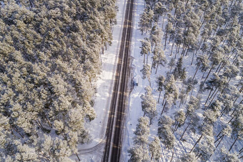 Aerial view of an empty straight road in the forest of Naage in Estonia - AAEF02509