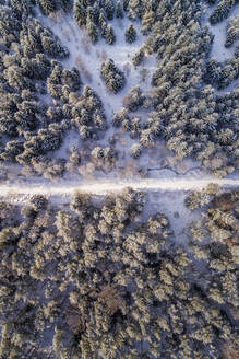 Aerial view of a road covered with snow in the forest of Naage in Estonia - AAEF02515