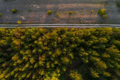 Aerial view road going in the edge of forest at Forby on Vormsi island, Estonia. - AAEF02545