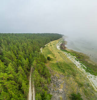 Aerial view road going in the edge of forest at Forby on Vormsi island, Estonia - AAEF02632
