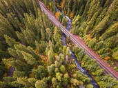 Aerial view of a road crossing the forest in Oregon, USA - AAEF03042