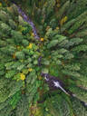 Aerial view of Silver falls state Park in Oregon, USA - AAEF03045