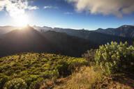 Roque Nublo and Roque Bentayga at sunrise, Gran Canaria, Canary Islands, Spain, Atlantic, Europe - RHPLF00471