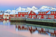 Pink sunset over the typical red houses reflected in the sea, Svolvaer, Lofoten Islands, Arctic, Norway, Scandinavia, Europe - RHPLF01182
