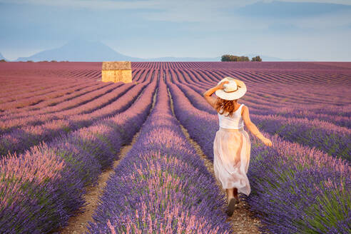 Woman with hat running in lavender fields, Plateau de Valensole, Alpes-de-Haute-Provence, Provence-Alpes-Cote d'Azur, France, Europe - RHPLF01491