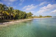 Cayo Largo De Sur, Isla de la Juventud, Cuba, West Indies, Caribbean, Central America - RHPLF03655