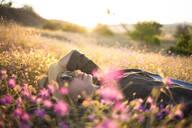 Young woman with sunhat lying on meadow at sunset - KNTF03081