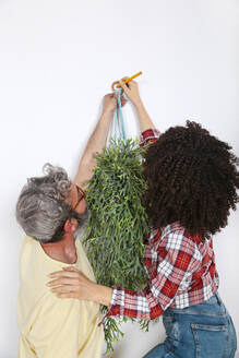 Couple hanging plant on the wall at home - RTBF01341