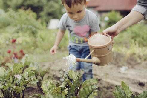 Mother with toddler watering vegetable in garden - KMKF01031