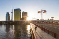 City skyline and the Skytree on the Sumida River at dawn, Tokyo, Japan, Asia - RHPLF04591