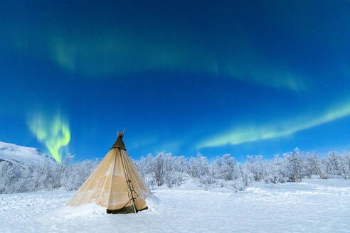 Isolated Sami tent in the snow under Northern Lights (Aurora Borealis), Abisko, Kiruna Municipality, Norrbotten County, Lapland, Sweden, Scandinavia, Europe - RHPLF04702