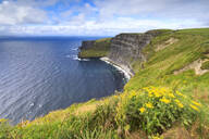 Cliffs of Moher, The Burren, County Clare, Munster, Republic of Ireland, Europe - RHPLF05533