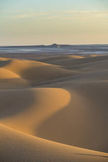 Sunset in the giant sand dunes of the Sahara Desert, Timimoun, western Algeria, North Africa, Africa - RHPLF07116
