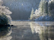 A hoar frost and transient mist over Loch Ard in the Loch Lomond and the Trossachs National Park in mid-winter, Stirling District, Scotland, United Kingdom, Europe - RHPLF07329