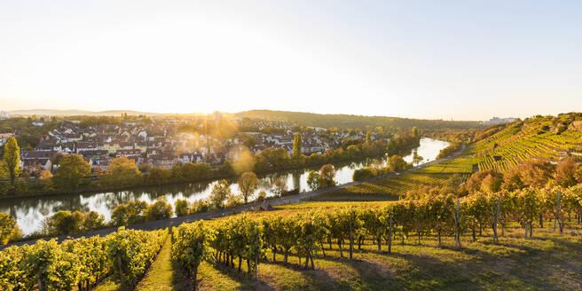 Deutschland, Baden-Württemberg, Stuttgart, Blick auf Stuttgart-Münster, Neckar, Weinberge, Terrassenweinbau, Steillage, Steillagenbau, Herbst, Weinbau - WDF05471