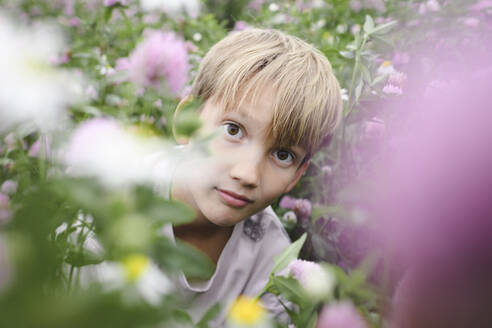 Boy looking to camera on flower field - EYAF00404