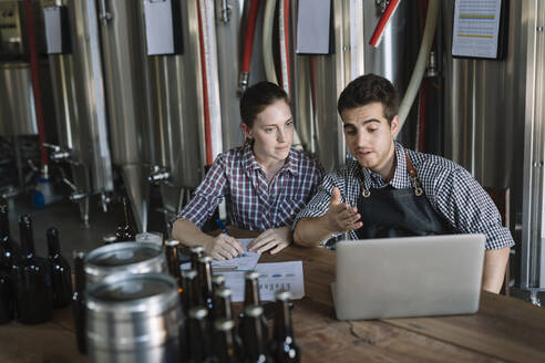 Young entrepreneurs working at a brewery - ALBF01055