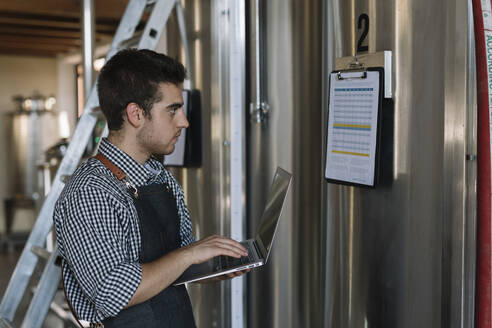 Young entrepreneur working with laptop at a brewery - ALBF01094