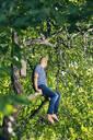 Man sitting on tree branch - FOLF10416