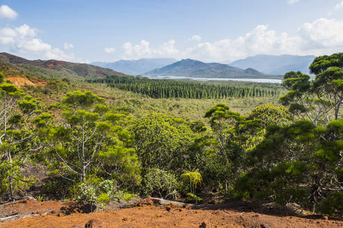 Scenic view of Blue River Provincial Park against sky, Yate, New Caledonia - RUNF02962