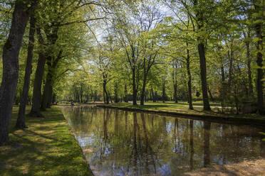 View of Koenigsallee amidst trees in park, Hofgarten, Germany - LBF02702