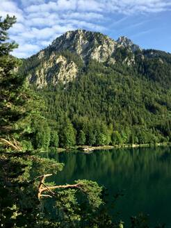 Scenic view of lake Alpsee against green mountains in forest at Ostallgäu, Germany - JTF01296