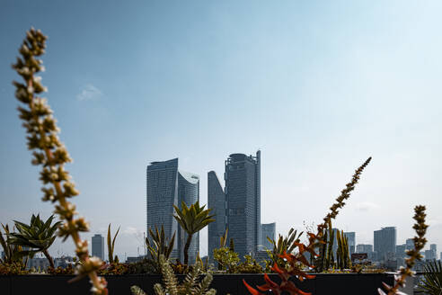 Low angle view of modern skyscrapers against sky in Mexico city during sunny day, Mexico - ABAF02247