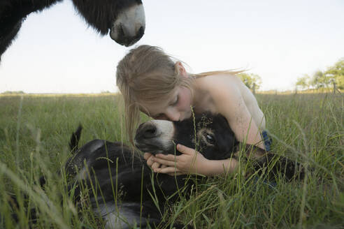 Girl hugging and kissing baby donkey in grass - FSIF04428