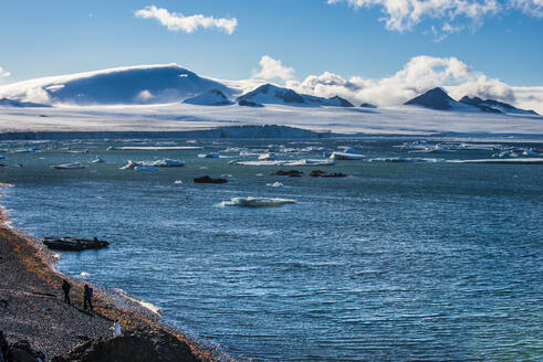 View over icebergs and the glaciers of Brown Bluff, Antarctica, Polar Regions - RHPLF09039