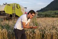 Organic farmer checking harvestability - SEBF00210