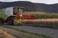 Organic farming, wheat field, harvest, combine harvester in the evening - SEBF00213