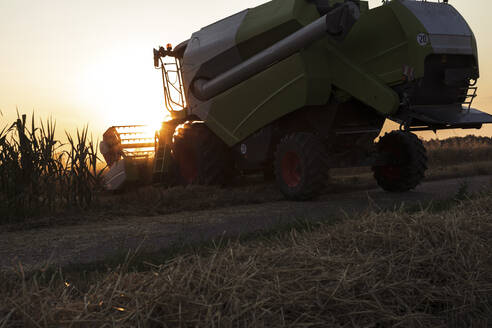 Organic farming, wheat field, harvest, combine harvester in the evening - SEBF00219
