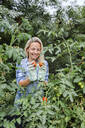 Blond smiling woman harvesting mangold - HMEF00522