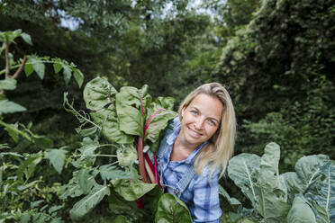Blond smiling woman harvesting mangold - HMEF00528