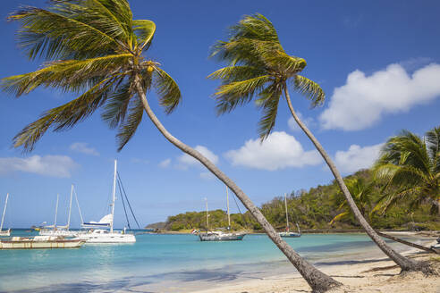 Saltwhistle Bay, Mayreau, The Grenadines, St. Vincent and The Grenadines, West Indies, Caribbean, Central America - RHPLF09499