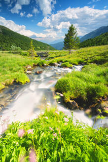 Stream in Stelvio National Park, Mortirolo Pass in Vall Camonica, Brescia, Lombardy dsitrict, Italy, Europe - RHPLF09619