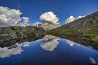 Rolle Pass, Cimon de la Pala reflected in a small lake, Dolomites, Veneto, Italy, Europe - RHPLF09709
